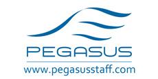 Pegasus Staff